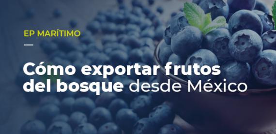 Cómo exportar frutos del bosque desde México